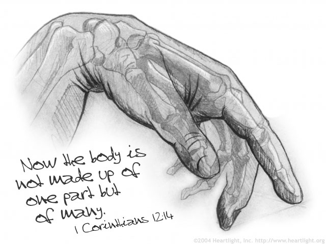 Inspirational illustration of 1 Corinthians 12:14