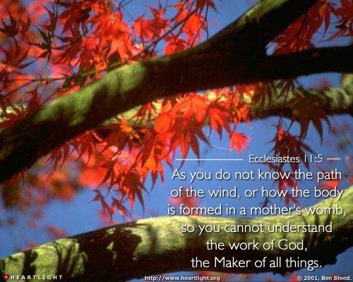 Inspirational illustration of Ecclesiastes 11:5