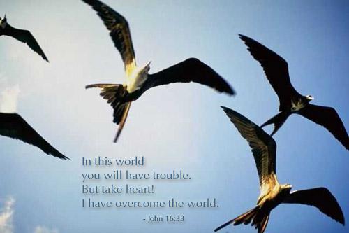 John 16:33 (34 kb)