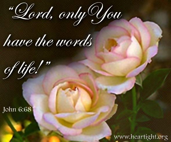 John 6:68 (45 kb)