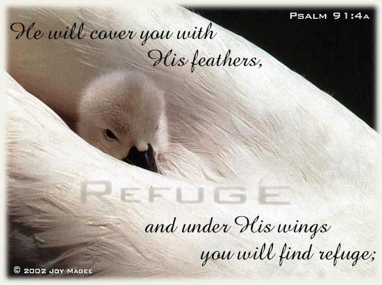 Inspirational illustration of Psalm 91:4