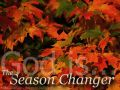 Who can change the seasons in my life? (Daniel 2:21 Background)