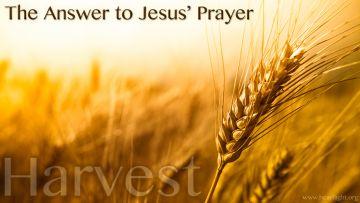 PowerPoint Background: Matthew 9:37-38 Answer