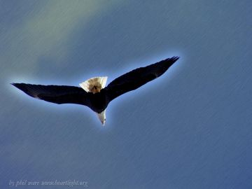 PowerPoint Background: On Eagle's Wing