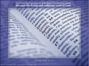 Illustration of the Bible Verse 1 Peter 1:23