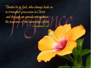 Illustration of the Bible Verse 2 Corinthians 2:14