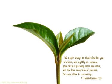 Illustration of the Bible Verse 2 Thessalonians 1:3