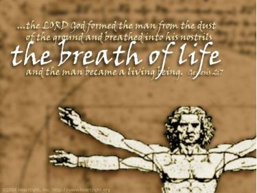 Illustration of the Bible Verse Genesis 2:7