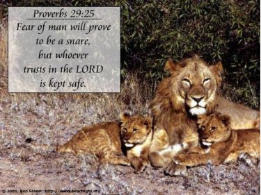 Illustration of the Bible Verse Proverbs 29:25
