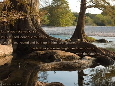Illustration of the Bible Verse Colossians 2:6-7