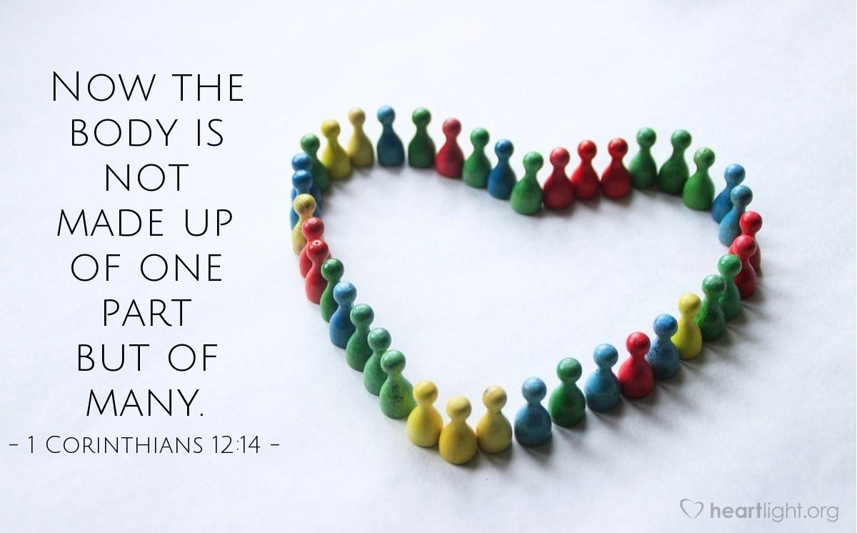 Inspirational illustration of 1 Coríntios 12:14