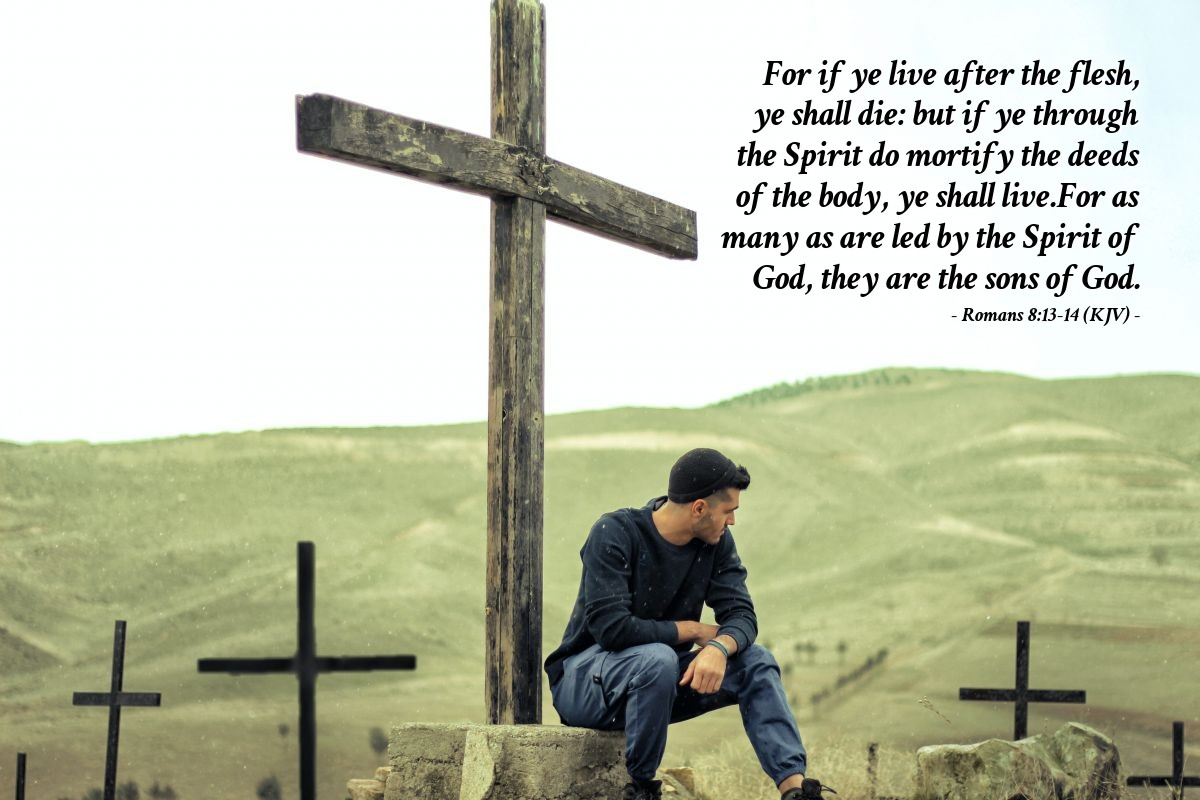 Illustration of Romans 8:13-14 (KJV) — For if ye live after the flesh, ye shall die: but if ye through the Spirit do mortify the deeds of the body, ye shall live.For as many as are led by the Spirit of God, they are the sons of God.