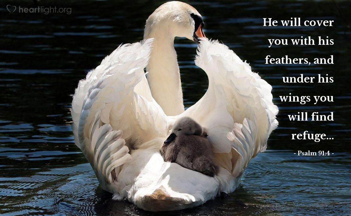 Inspirational illustration of Psalm 91:4