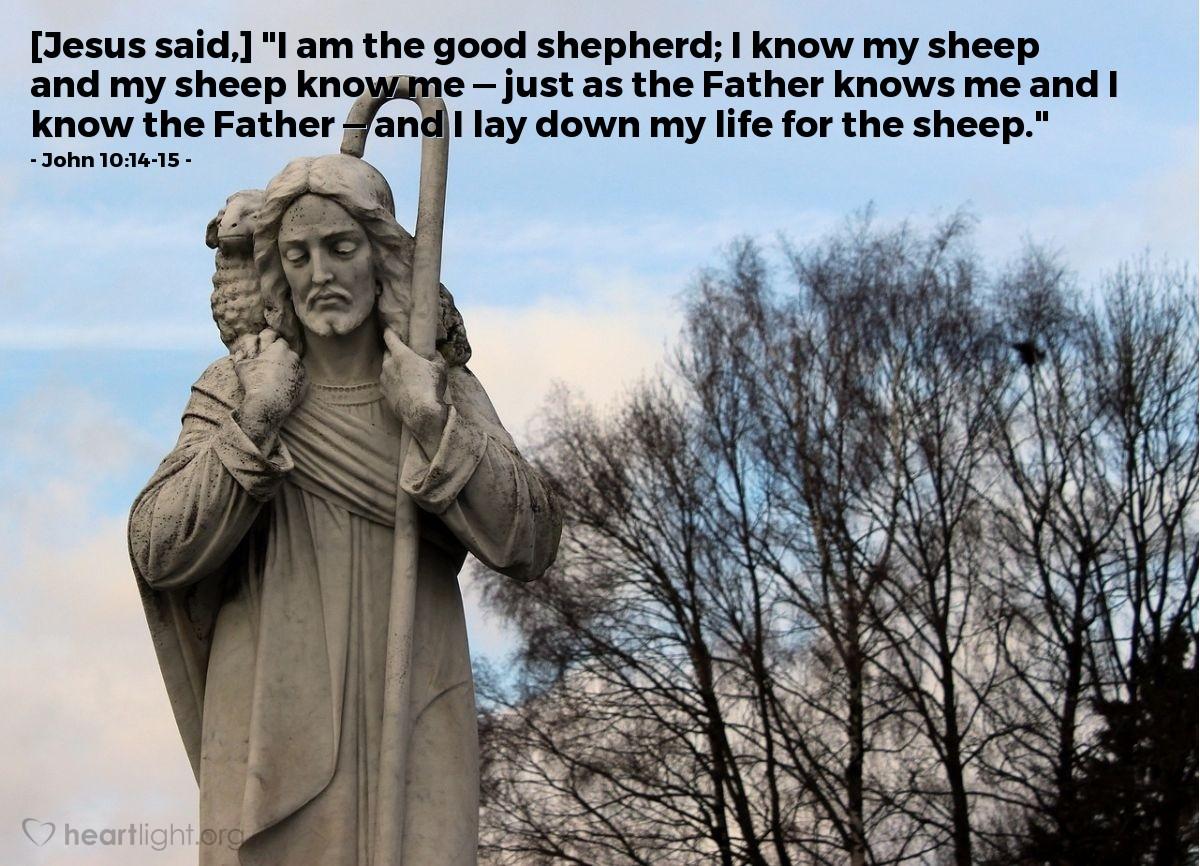 Inspirational illustration of John 10:14-15