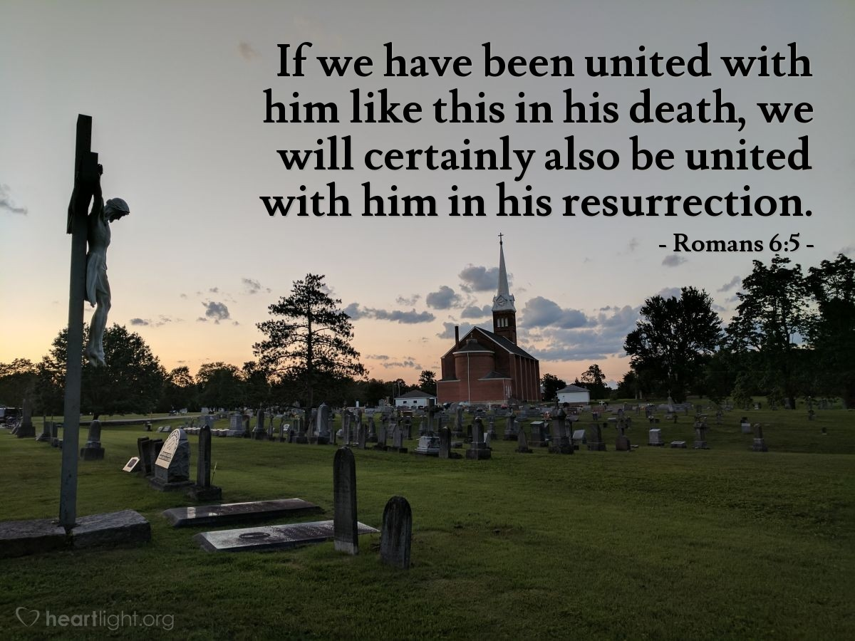 Illustration of Romans 6:5 — If we have been united with him like this in his death, we will certainly also be united with him in his resurrection.