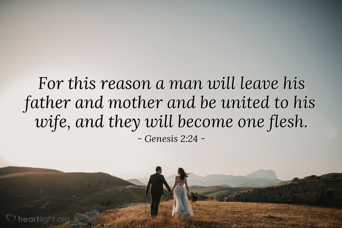 Illustration of Genesis 2:24 — For this reason a man will leave his father and mother and be united to his wife, and they will become one flesh.