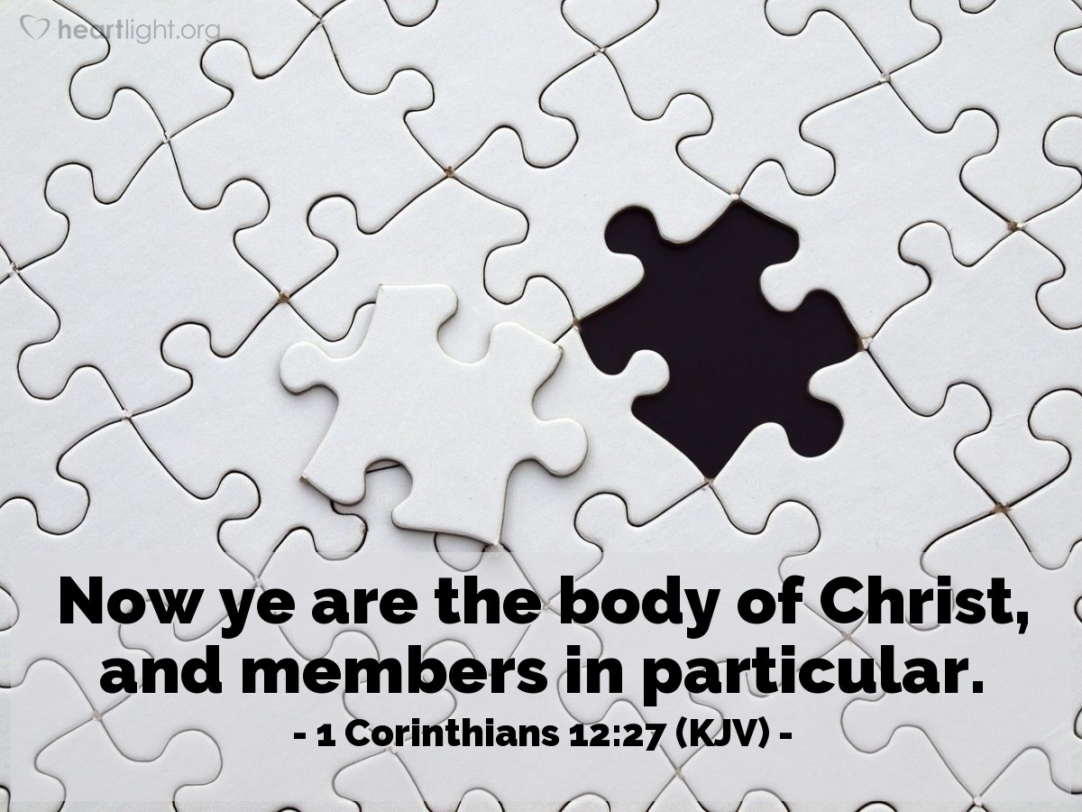 Illustration of 1 Corinthians 12:27 (KJV) — Now ye are the body of Christ, and members in particular.