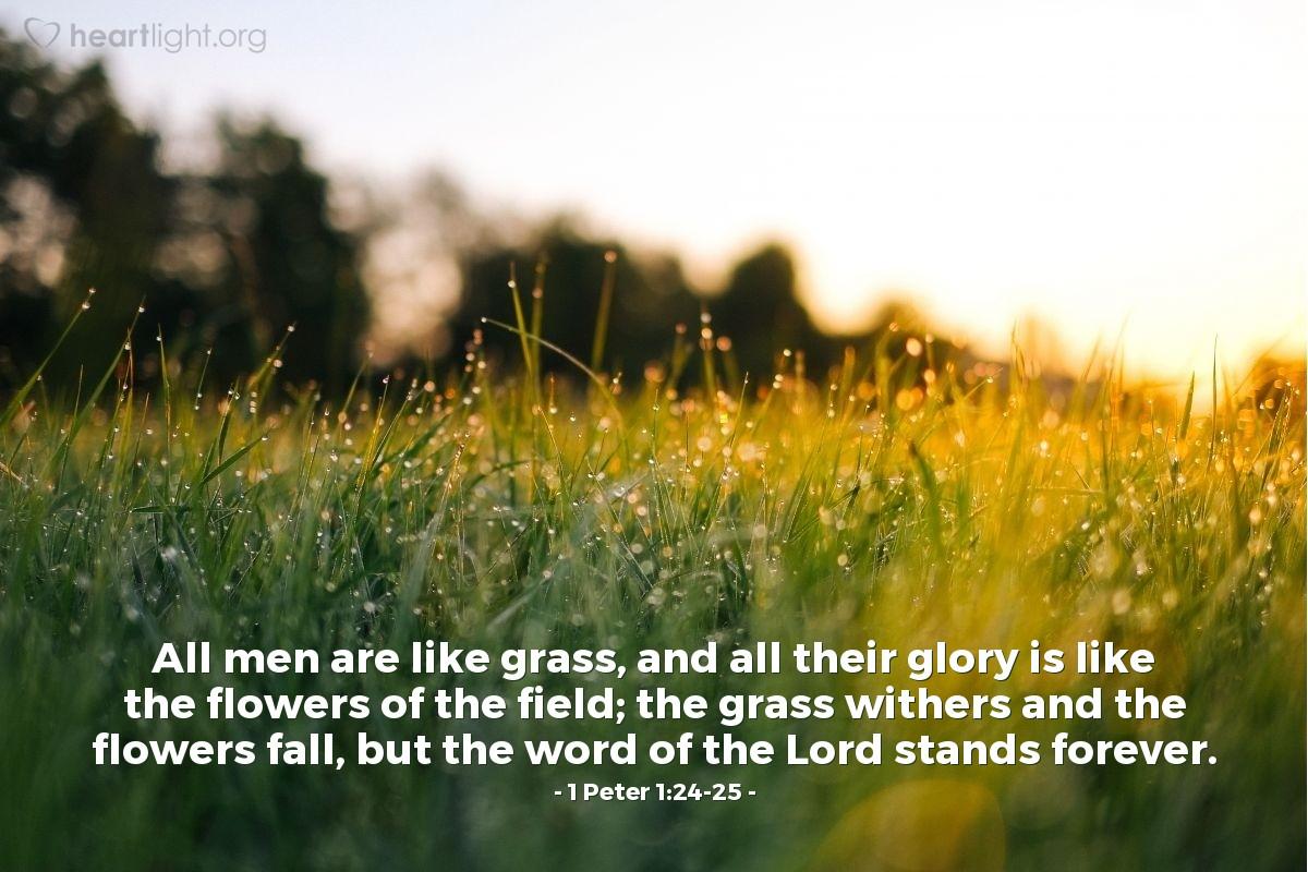 Inspirational illustration of 1 Peter 1:24-25