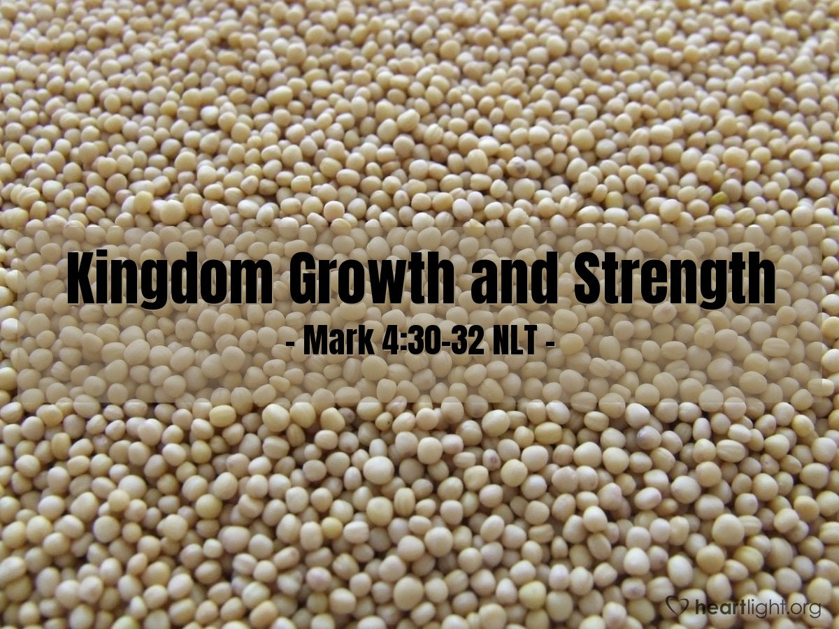 Illustration of Mark 4:30-32 —  The kingdom of God is like a mustard seed.