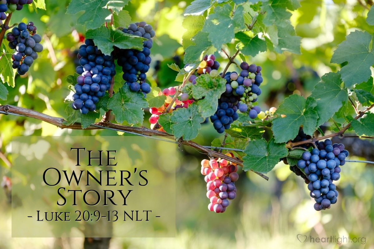 "Illustration of Luke 20:9-13 — ""A man planted a vineyard."""