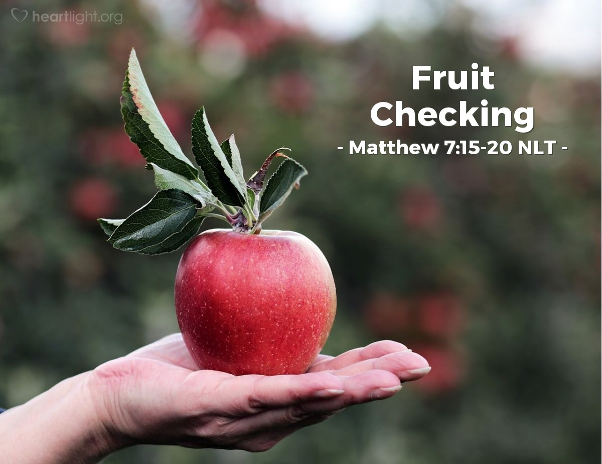 Illustration of Matthew 7:15-20 —  In the same way, every good tree makes good fruit.