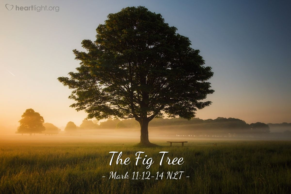 """Illustration of Mark 11:12-14 — """"People will never eat fruit from you again."""""""
