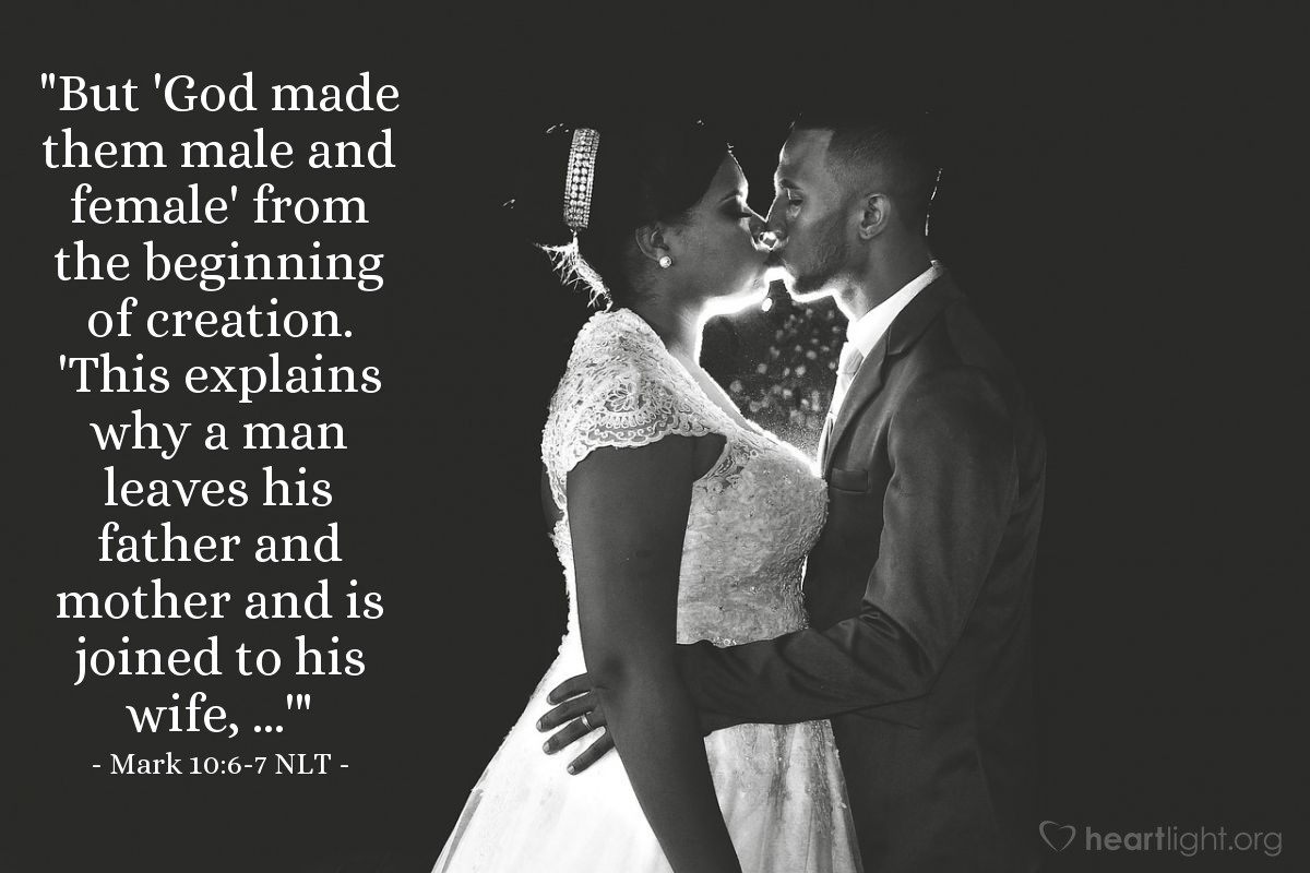 "Illustration of Mark 10:7 — ""'That is why a man will leave his father and mother and be joined to his wife.'"""