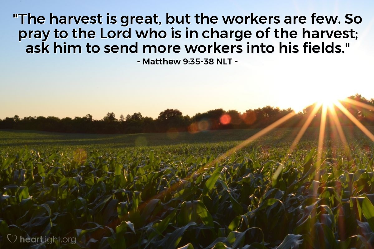"""Illustration of Matthew 9:35-38 — """"There are many, many people to harvest (save)."""""""