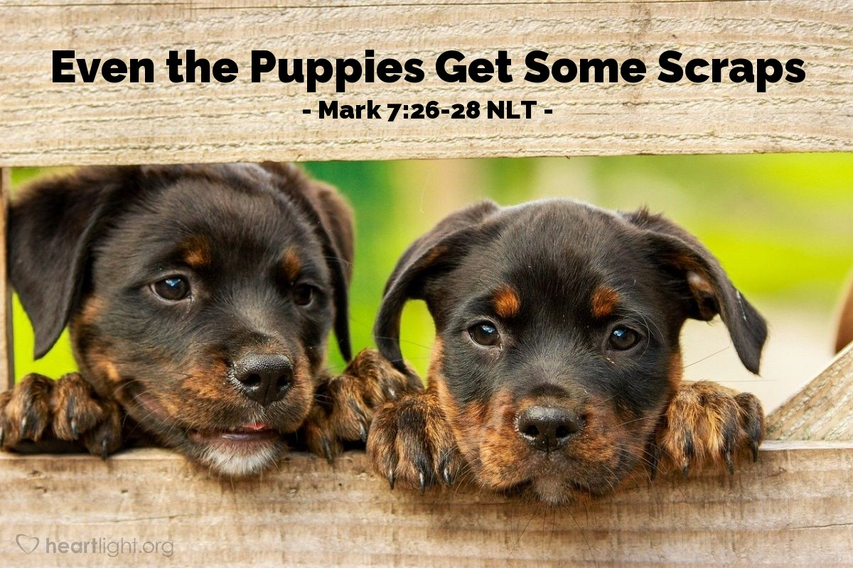 "Illustration of Mark 7:27-28 — ""It is not right to take the children's bread and give it to the dogs. First let the children eat all they want."""