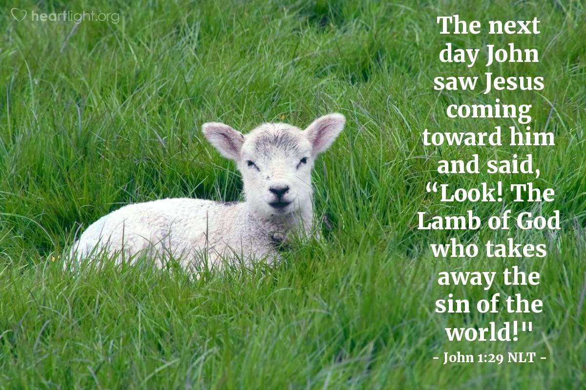 "Illustration of John 1:29 — The next day John saw Jesus coming toward him. John said, ""Look, the Lamb of God. He takes away the sins of the world!"