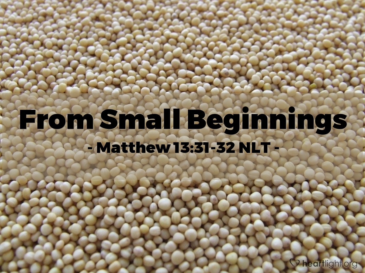 Illustration of Matthew 13:31-32 —  That seed is one of the smallest of all seeds.