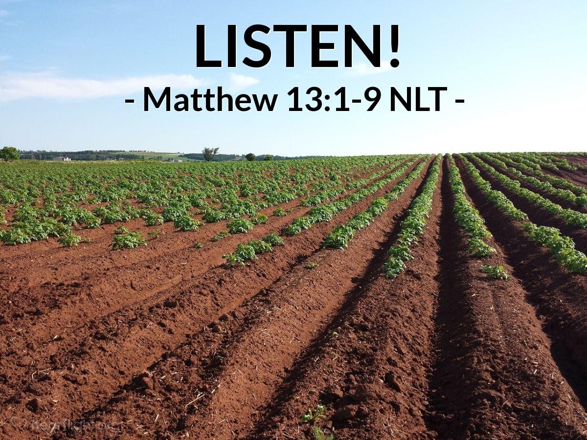 Illustration of Matthew 13:1-9 —  You people that hear me, listen!