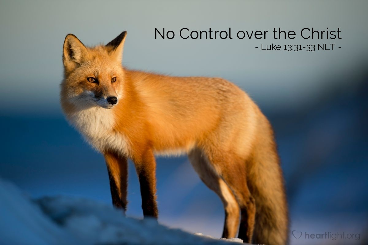 """Illustration of Luke 13:31-33 — """"Go away from here and hide! Herod wants to kill you!"""""""