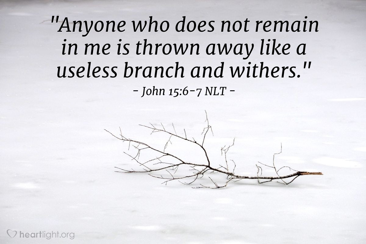 """Illustration of John 15:6-7 — """"If a person does not continue in me, then he is like a branch that is thrown away. That branch dies. People pick up dead branches, throw them into the fire, and burn them. """""""