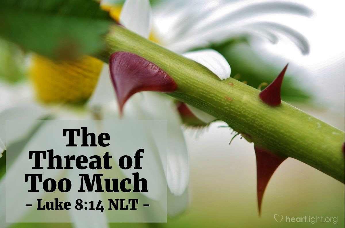 """Illustration of Luke 8:14 — """"What is the seed that fell among the thorny weeds?"""""""