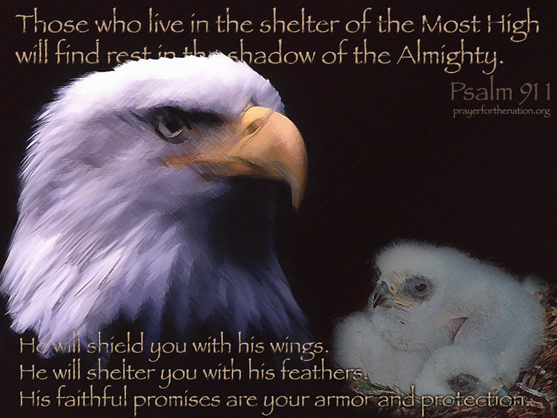 Psalm 91:1-4 (94 kb)
