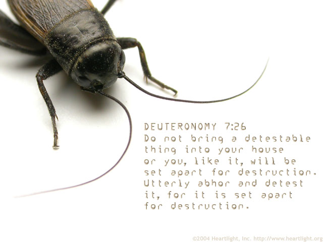 Illustration of Deuteronomy 7:26 on Sin