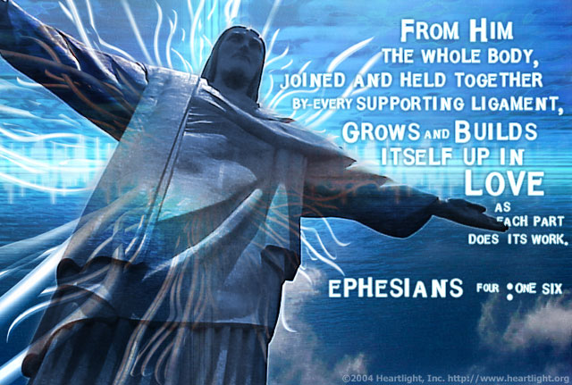 Illustration of Ephesians 4:16 on Jesus