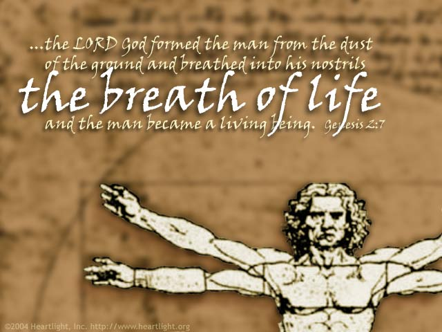 Illustration of Genesis 2:7 on Life