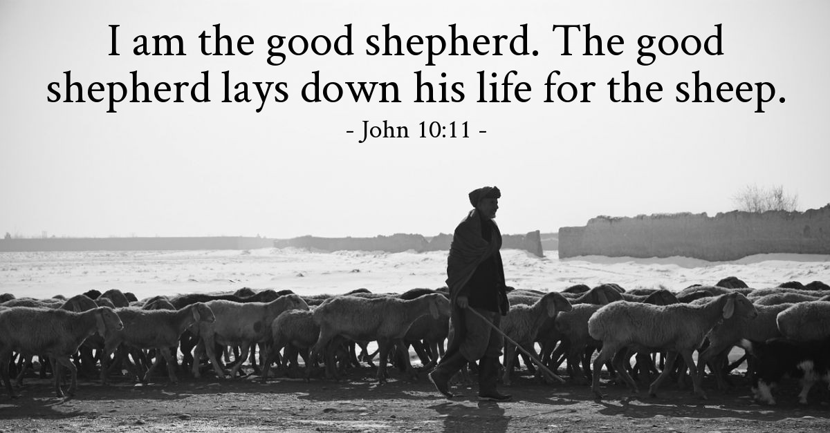 John 10:11 — Today's Verse for Friday, August 9, 2019