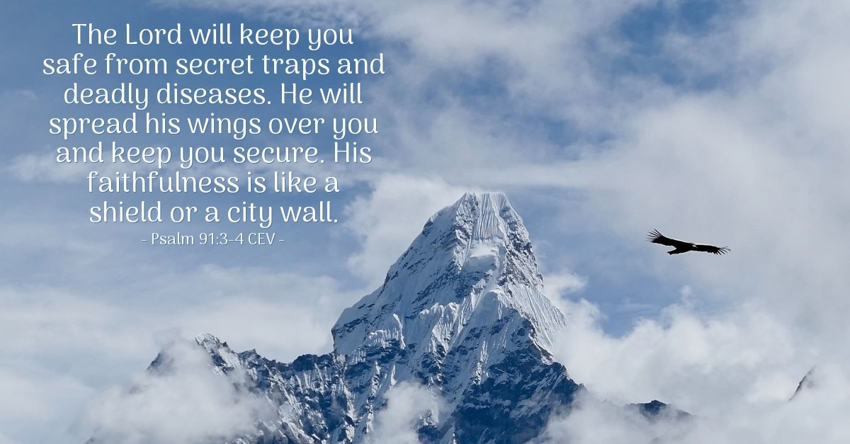 God Protects From Traps Amp Diseases Psalm 91 3 4 Cev