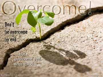 PowerPoint Background: Romans 12:12 Full