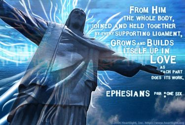 Illustration of the Bible Verse Ephesians 4:16