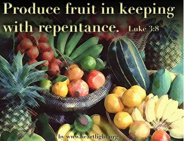 Illustration of the Bible Verse Luke 3:8
