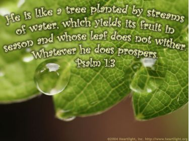 Illustration of the Bible Verse Psalm 1:3