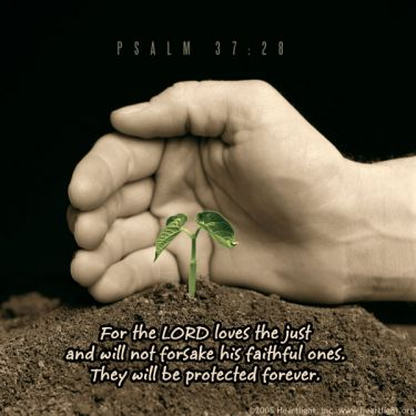Illustration of the Bible Verse Psalm 37:28