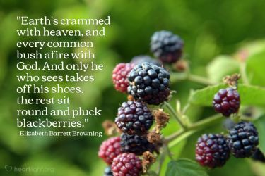 Illustration of the Bible Verse Quote by Elizabeth Barrett Browning