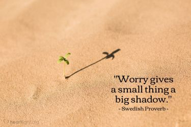 Illustration of the Bible Verse Quote by Swedish Proverb