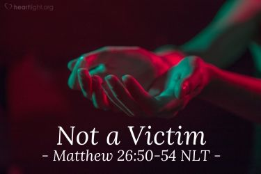 Illustration of the Bible Verse Matthew 26:50-54 NLT