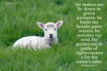 Illustration of the Bible Verse Psalm 23:2-3